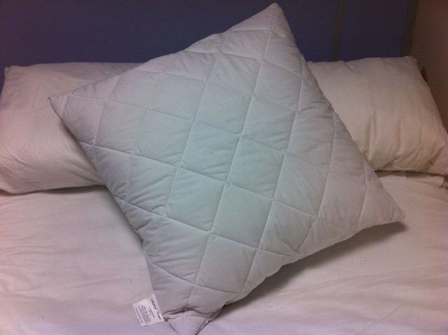 Continental Square Quilted Pillow Protector